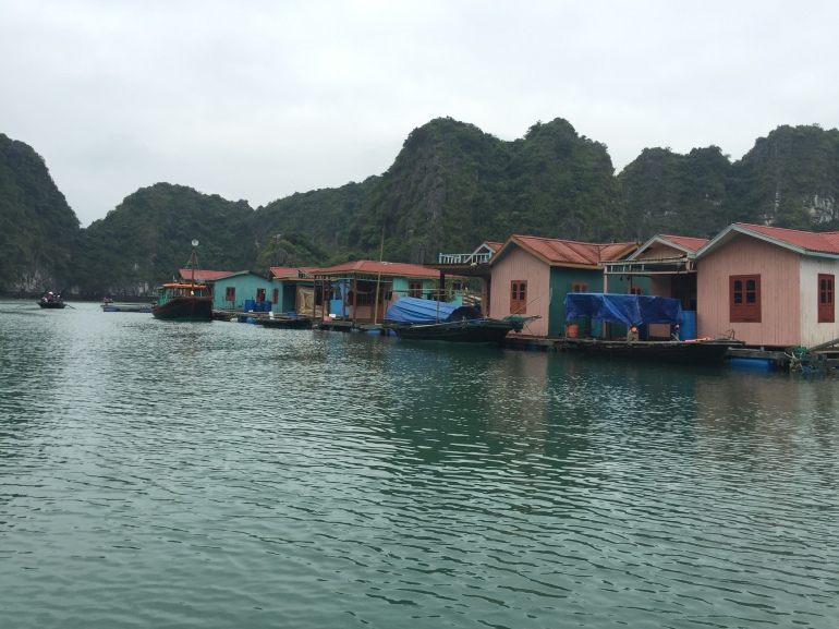 Floating houses in the village